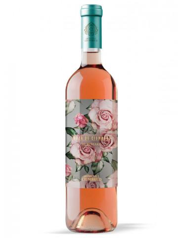Roza de Ciumbrud