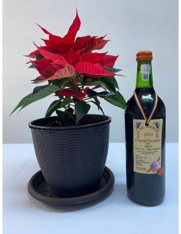 VIN DE COLECTIE, Rovit, Cabernet Sauvignon 2000