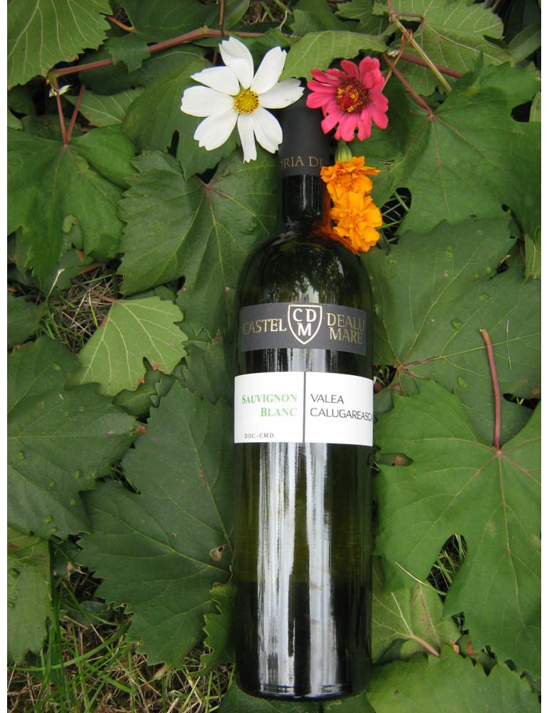 HO RE CA, Rovit, Sauvignon Blanc